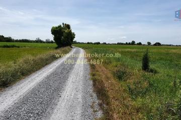 ขาย ที่ดิน 19 ไร่ 292 ตร.ว. ราคาถูก เหมาะทำการเกษตร